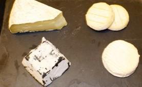 fromage brebis provence terroir 13