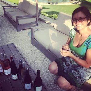 syndicat des vins du luberon