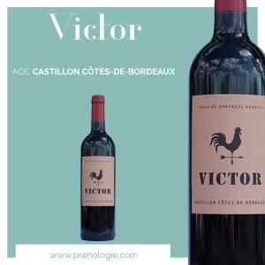 vin a prenom victor