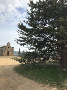 domaine vins sulauze biodynamie provence
