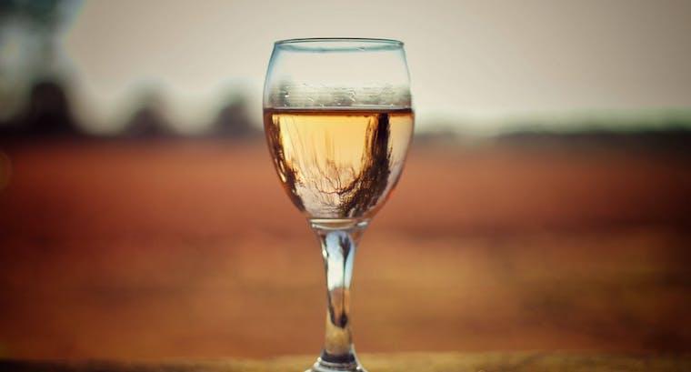 histoire de femme histoire de vin
