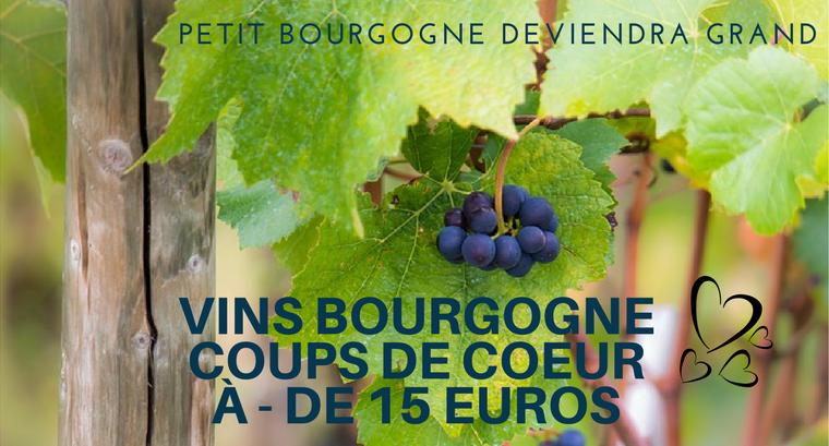 bourgogne coup de coeur vins - 15 euros