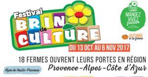 Festival Brin de Culture 2018 : du 19 octobre au 4 novembre 2018