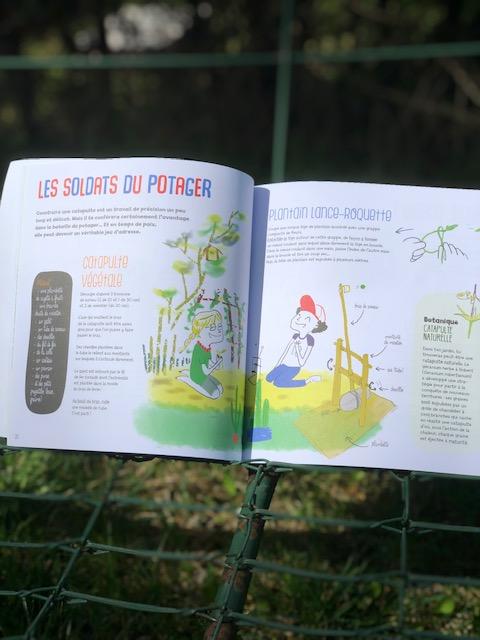activités et jouet avec les plantes