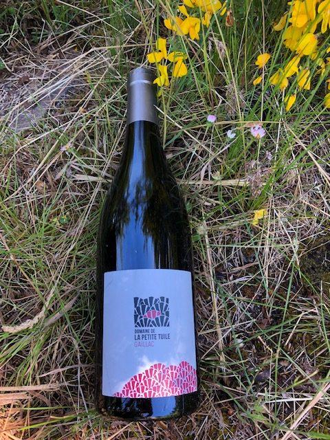 vins d'été rouge