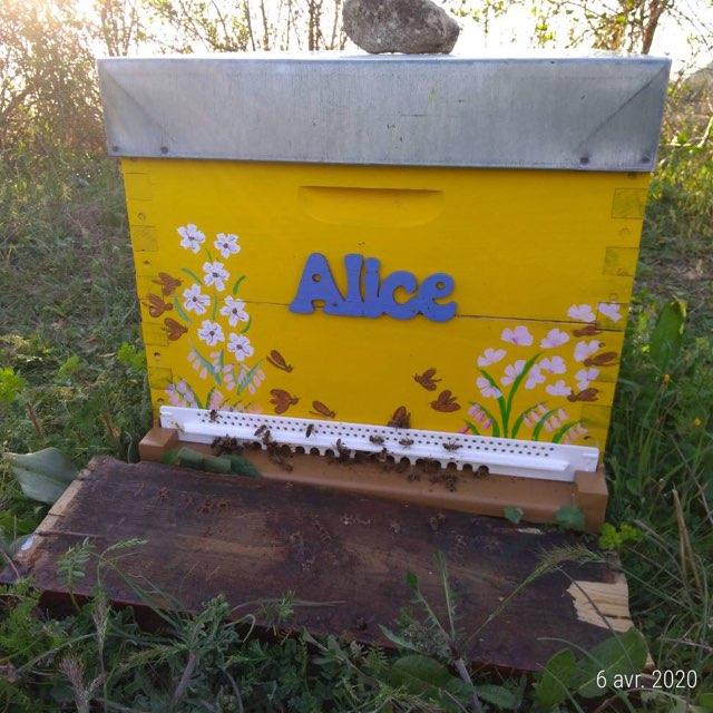miel et huile essentielles en provence