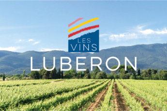 vins luberon balade oenotourisme