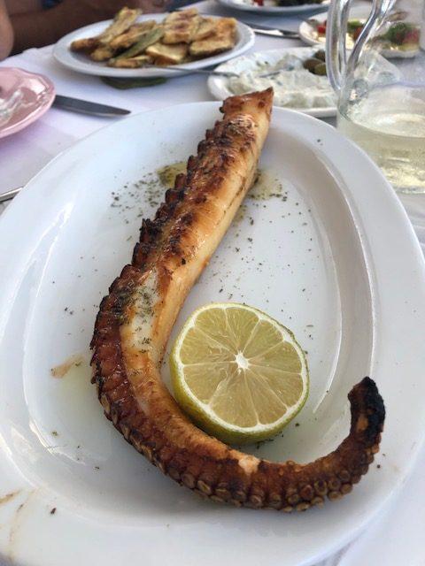 grece peloponnese restaurant grec limeni