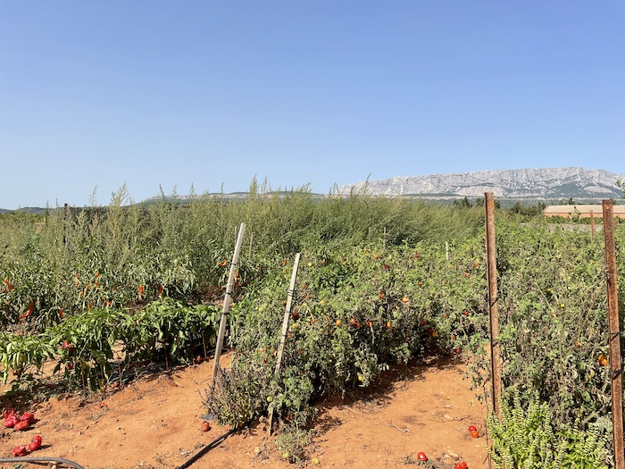 potager du mistral rousset provence